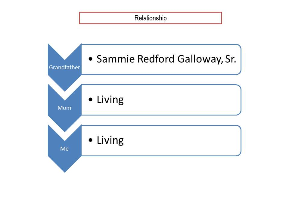 relationship-graph-sammie